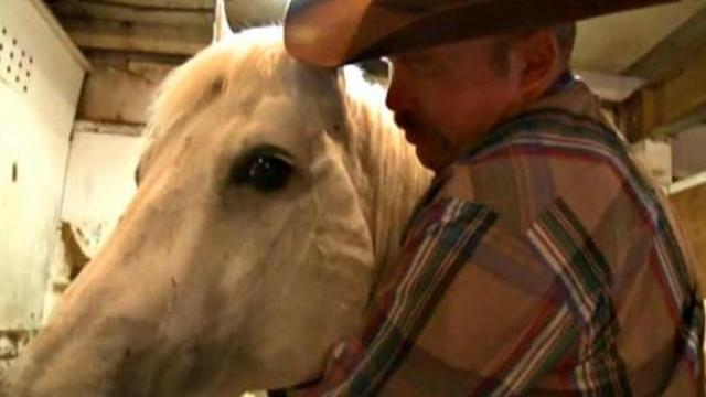 Cowboy reunites with horse after forest fire separates them