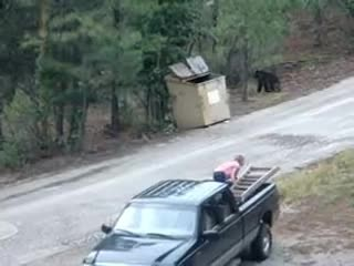 Mama Bear Who Couldn't Get Her 3 Cubs Out Of A Dumpster Cries All Night Until The Neighbors Come To