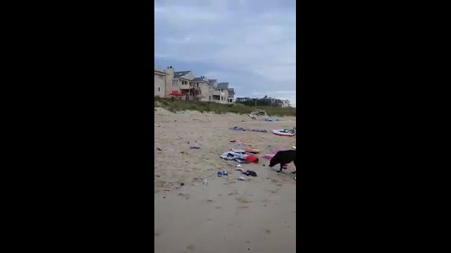10 tons of trash left on Virginia beach after Memorial Day Weekend