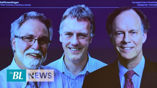 US/UK researchers clinch Nobel Prize in physiology/medicine