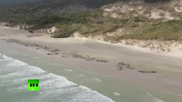 Helicopter crew flies over beach and films scene that's too hard to even fathom