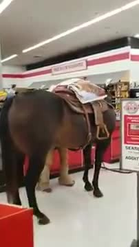 Cowboy Causes Commotion at Store When He Parades Through Aisles with His Horse