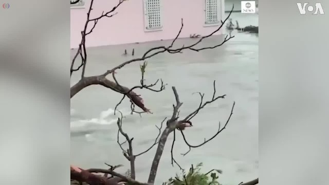 Hurricane Dorian_ Flood Victims Swim to Safety in Bahamas