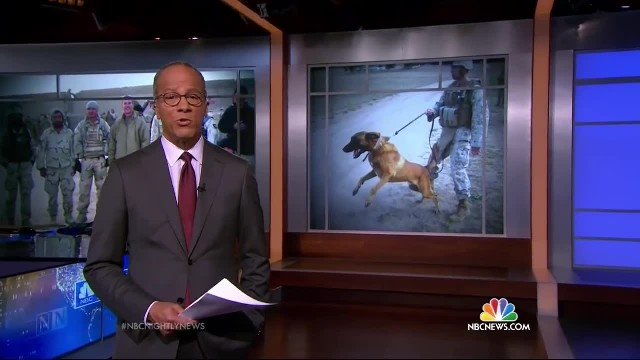 Veteran Tears Up On Camera When He Says THIS About His Military Dog…