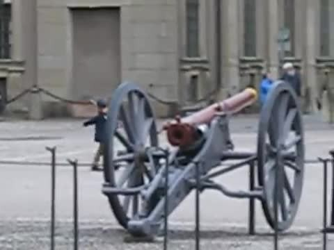Swedish guard breaks rules to make child's day while on duty at royal palace