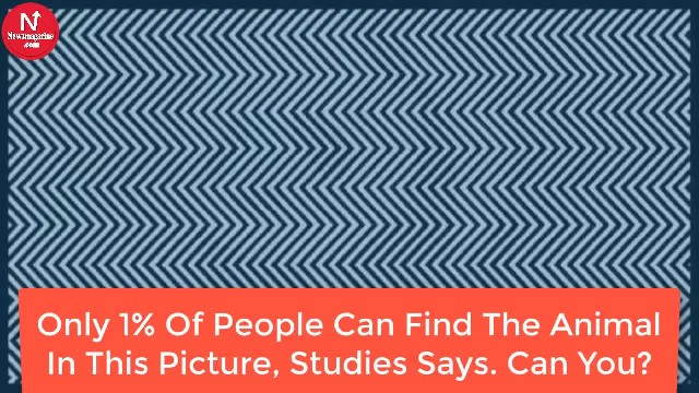 Only 1% Of People Can Find The Animal In This Picture, Studies Says. Can You