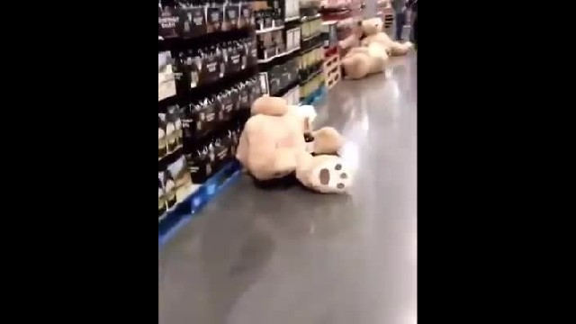 The Giant Teddy Bears At Costco Had A Wild Party