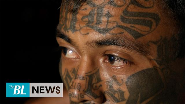 Major MS-13 arrests dismantle gang leadership in NY