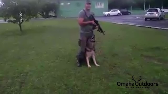 German Shepherd Dog (GSD) and Soldier Dancing to Por Una Cabeza