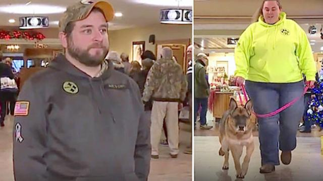 Nervous veteran waits to reunite with k-9, calls her name on live tv to see if she remembers