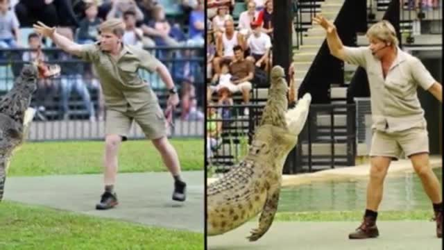 Steve Irwin and his son fed the same crocodile in the same position 15 years apart