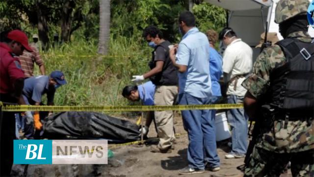 43 dead bodies found in Mexico