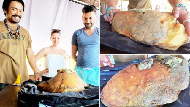 Barman discovers $500,000 lump of whale vomit on Thailand beach