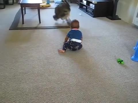Dog and baby are alone in the room. Then mom hears her child scream
