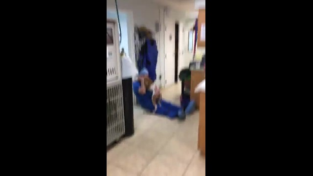 Severely burned dog reunites with vet who saved his life in heartwarming video