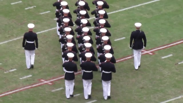 These marines stood in a line. Their next move had the audience completely roaring