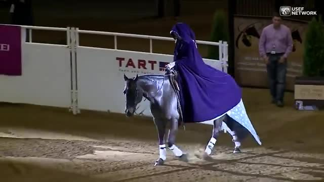Horse Rider's 'Frozen' Themed Routine Wins Her World Freestyle Reining Title
