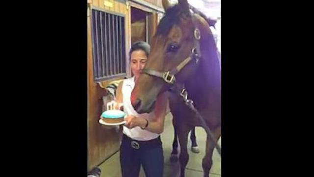 They sing happy birthday to the horse - then 5 seconds in everyone