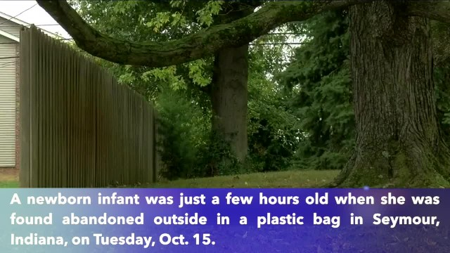 Infant found abandoned in plastic bag in Indiana was only a few hours old