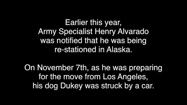 Soldier Is Reunited With Dog He Thought He Had To Leave Overseas