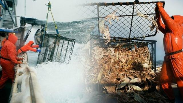 These crab fishermen are earning up to $100,000 for a month's work in return for putting their lives
