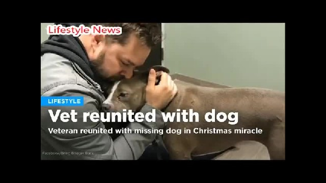 Veteran Comes Home Only To Find His Home Broken Into And His Lovely Dog Missing