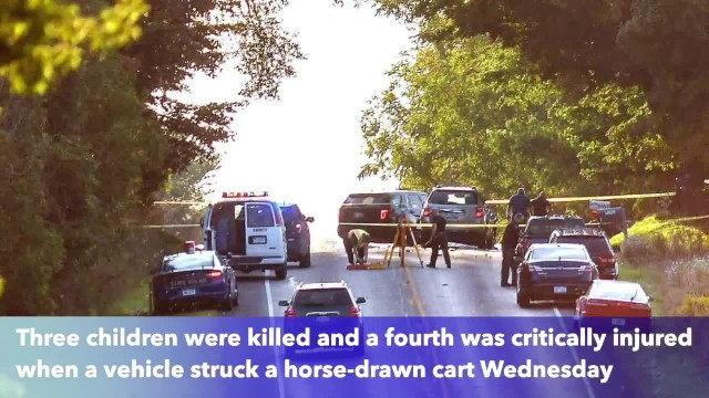3 Amish children killed, another injured after vehicle crashes into horse-drawn cart