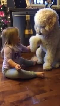 What they captured their daughter doing with the dog is absolutely priceless