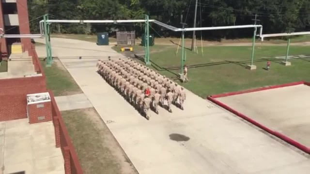 "Marines stand still in perfect unison then mesmerizes everyone once the leader yells ""Go"""