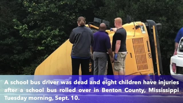 Driver dead, 8 children hurt in school bus crash in Benton County, Mississippi