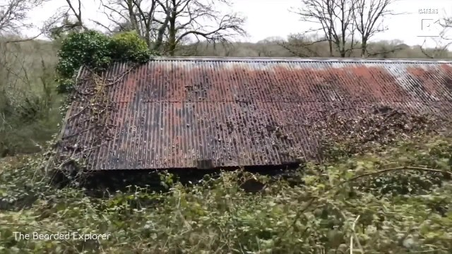 Couple finds abandoned cottage hidden deep in woods and opens door to find it 'frozen in time'