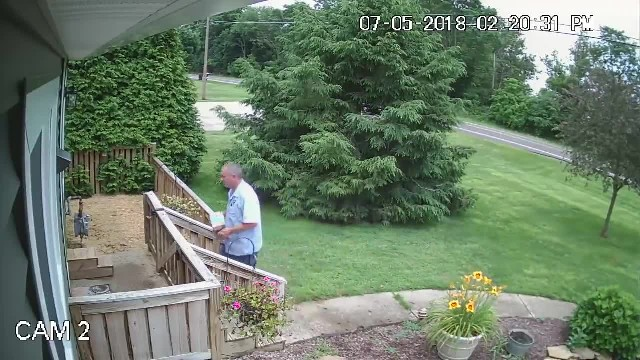 Mailman creeps up to the porch, delivers package to the door and waits for the dogs
