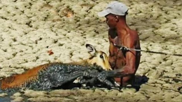 This man risked his life to save a trapped impala