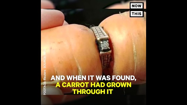 She Loses Wedding Ring While Gardening, Finds It Wrapped Around A Carrot 13 Yrs Later