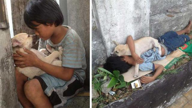 Boy adopts street dog to avoid being lonely – now their friendship is moving thousands