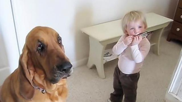 Hound dog and human brother sing the blues for mom