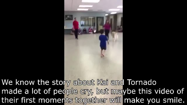 Boy With Autism Won't Let Anyone Touch Him – Watch The Tearful Moment He Meets His Service Dog
