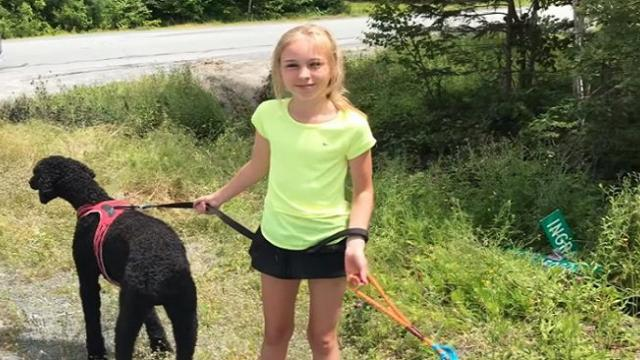 11-year-old girl's kindness toward strangers following crash 'worth more than anything'