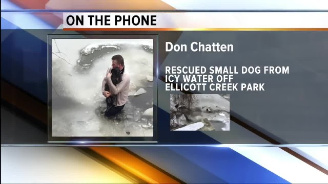 Man saves small dog from icy water off Ellicott Creek