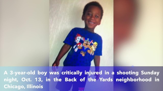 Boy, 3, shot in head in Back of the Yards in Chicago