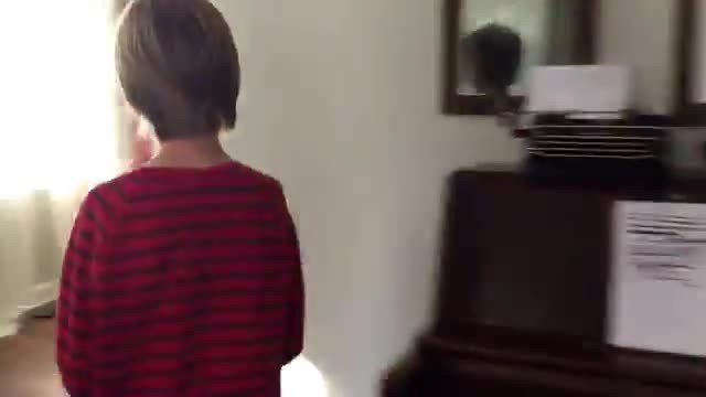 Little boy and dog both start crying moment they're reunited after year apart