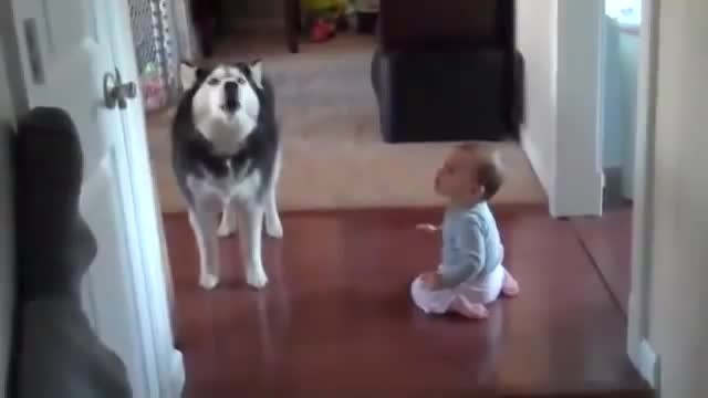 baby talk with his dog - Rumble