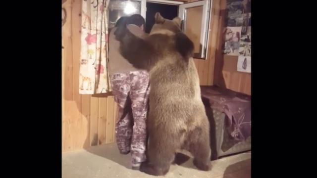 Semyon the bear gives man the warmest hug