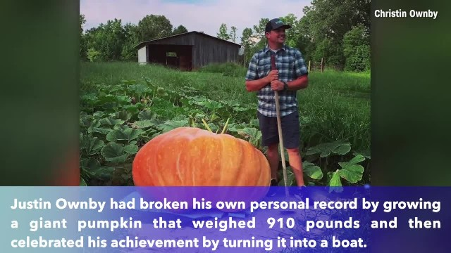 Tennessee man grows 910-pound pumpkin and then turns it into boat
