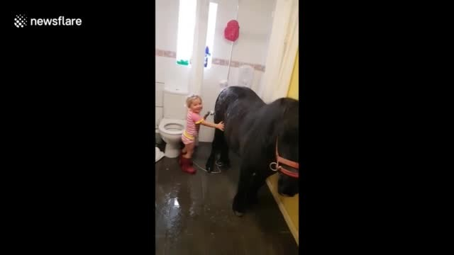 Mom Catches Tiny Tot Sneaking Pony Into House For Bathtime & Dies Laughing