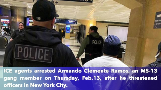 ICE arrests MS-13 gang member for threatening to shoot New York police officers