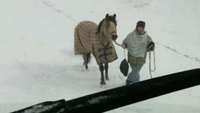 Teen rides horse six miles through snowstorm to reach stranded truck driver spotted on traffic cam