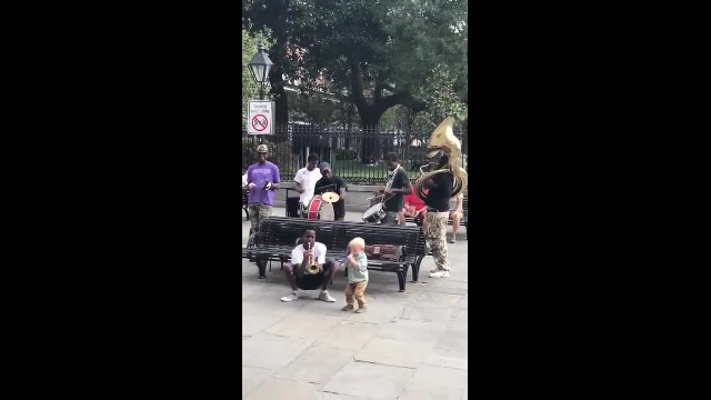 Little toddler hears jazz band, grabs fake trumpet & totally steals the show.