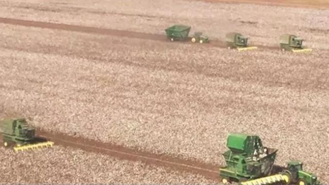 Farmers come together to harvest crop of neighbor fighting cancer: 'He's very humble.'