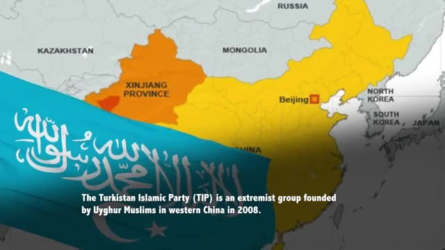 What Is the Turkistan Islamic Party?